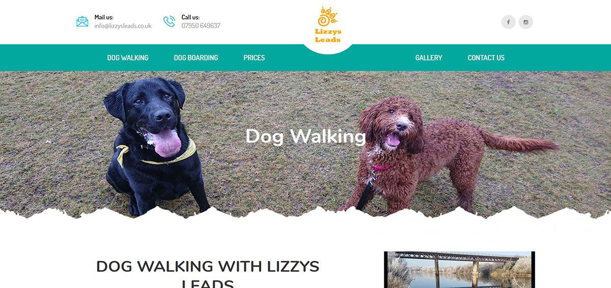 Lizzys Leads from Cambuslang. Dog Walking and Dog Boarding Service